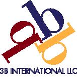 3B International